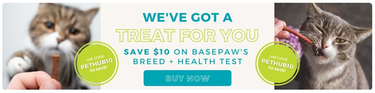 Save $10 on Basepaws DNA kit