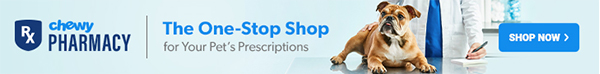 Chewy Pharmacy Ad - America Bulldog with Vet - The One Stop Shop