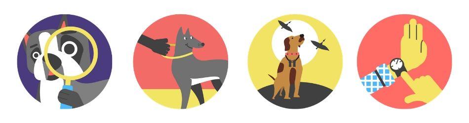 Dogo app icons