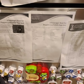 Checklists from Raising Your Puppy posted to fridge