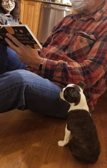 """Hedy reading his first book with grand""""paw"""""""