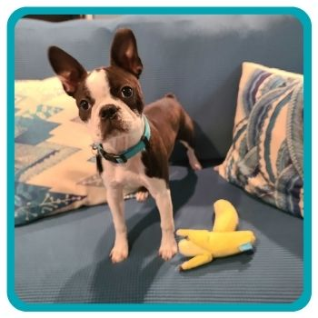 Hedy with her Banana Toys