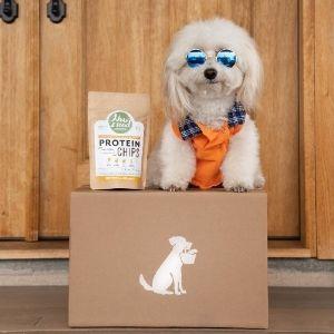Mini poodle dog sitting on box next to NewRoad treats