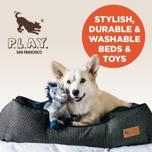P.L.A.Y. Pet Lifestyle & You