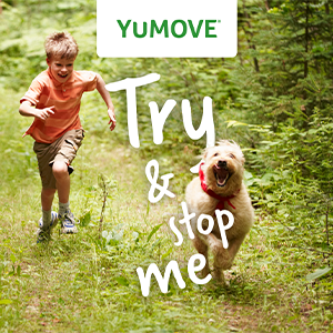 yumove_try_and_stop_me