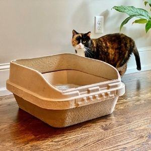 KittySift_Sifting_LitterBox