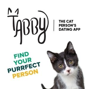 Tabby - Find Your Purrfect Person