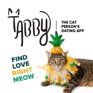 Tabby - Find Love Right Meow