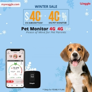 Waggle Pet Monitor
