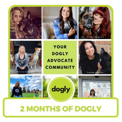 2 month membership to Dogly