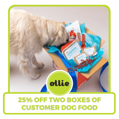 25 percent off two boxes of custom dog food
