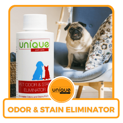 Free Odor and Stain Eliminator from Unique Pet Care