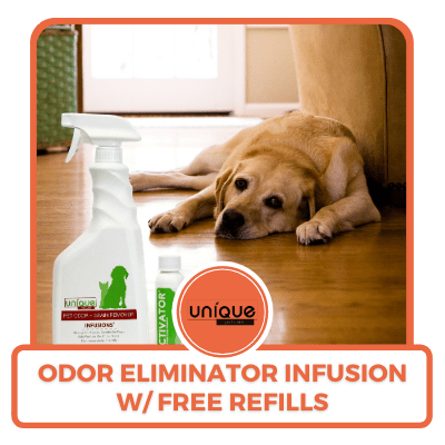 Odor Eliminator Infusion with Free Refills