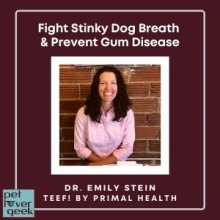 Dr. Emily Stein - Pet Lover Geek Episode - Fight Stinky Dog Breath and Prevent Gum Disease