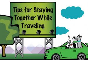 Tips for staying safe while traveling thumbnail