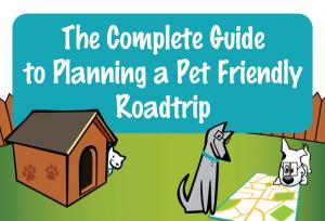 planning pet friendly roadtrip thumbnail